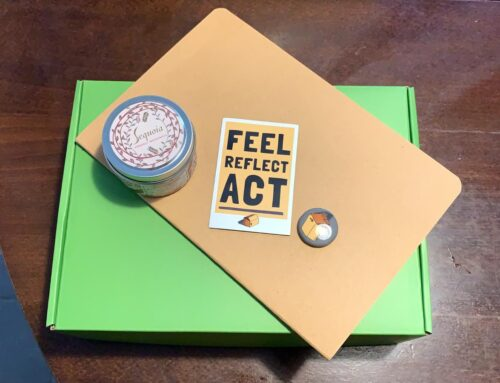 Shift Lab 2.0 Prototype: The White Fragility Subscription Box